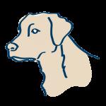 Dog Formulations