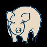 Swine Formulations