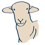 Sheep Formulations